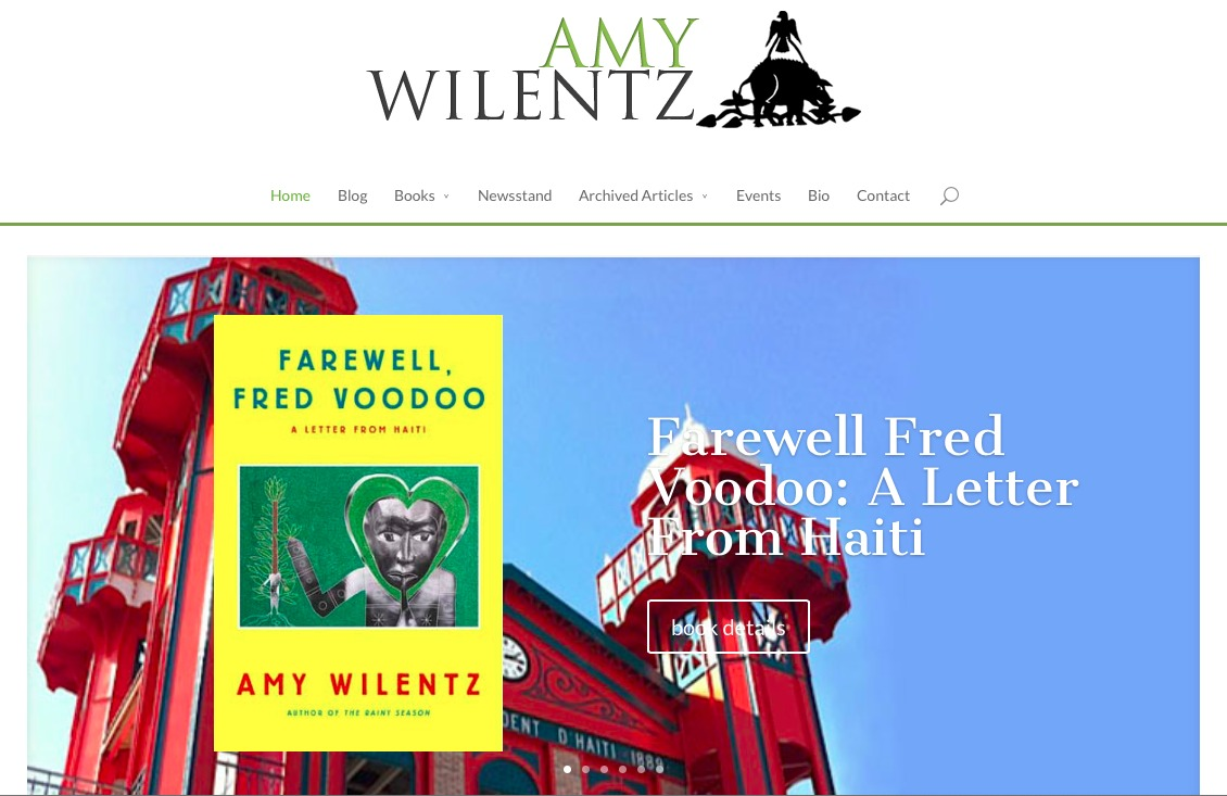 Screenshot of Amy Wilentz website